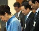 Bà Park Geun-hye bị phế truất, Hàn Quốc lún sâu vào bão táp ngoại giao