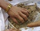 Phát hiện 12 mẫu phân bón kém chất lượng