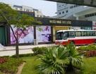 Thu hồi công nhận đạt chuẩn đón khách 8 điểm bán hàng cho khách Trung Quốc