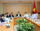 Phó Thủ tướng họp khẩn tháo gỡ khó khăn cho chăn nuôi lợn