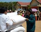 Phân bổ hàng nghìn tấn gạo hỗ trợ người dân đón Tết