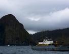 Nhật Bản cử đoàn thị sát tới quần đảo đang tranh chấp với Nga