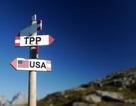 Quan chức 11 quốc gia họp bàn tìm cách cứu TPP