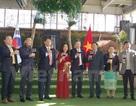 Rộn ràng Tết Đinh Dậu của cộng đồng người Việt tại Hàn Quốc