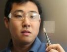 Các nhà khoa học Úc sử dụng dầu đậu nành để chế tạo graphene
