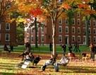 """ĐH Harvard bị tố """"kì thị sắc tộc"""" khi tuyển đa số SV da màu và thiểu số"""
