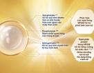 Những nghiên cứu mới nhất về thành phần giàu dinh dưỡng MFGM trong sữa