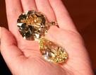 Sắp bán đấu giá hai viên kim cương vàng lớn nhất thế giới