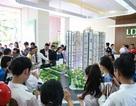 Khu Nam – Điểm hẹn an cư của người dân TP. Hồ Chí Minh