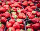Những thực phẩm ăn thả phanh mà không lo tăng cân