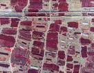 Bạn sẽ biết Trung Quốc rộng lớn thế nào sau những bức ảnh này