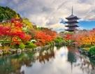 Những hành trình mùa thu châu Á được yêu thích nhất