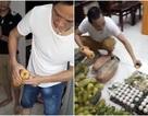Phát hiện rau trong bếp ăn của trẻ mầm non nhiễm thuốc trừ sâu