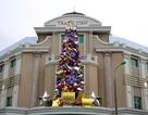 Không khí Giáng sinh đã ngập tràn ở các trung tâm thương mại Hà Nội