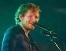 Một fan bị bắt vì… hát nhạc của Ed Sheeran