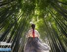 Tour du lịch Hàn Quốc dành riêng phái đẹp trong tháng 10
