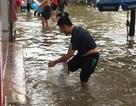 Mưa ngập băng đường, người dân tập bơi, bắt cá trên phố