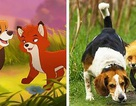 """Những thước phim hoạt hình như """"sao y"""" từ thế giới động vật"""