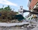 Nhiều rác thải xuất hiện dưới đường sắt trên cao Cát Linh - Hà Đông