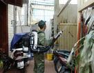 Hơn 15 nghìn ca mắc sốt xuất huyết, Hà Nội huy động bộ đội phun hóa chất diệt muỗi ngày đêm