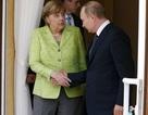 Tổng thống Putin: Nga chưa bao giờ can thiệp công việc của nước khác