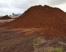 Bộ Công Thương cho xuất hơn 11.000 tấn quặng sắt