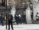 Nỗi lo an ninh ám ảnh các nghị sĩ Anh