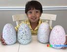 Cậu bé 6 tuổi kiếm 11 triệu USD/năm nhờ đánh giá đồ chơi trên mạng