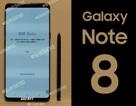 """Lộ ảnh bản dựng và ngày ra mắt """"bom tấn"""" Galaxy Note 8"""