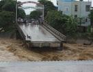 Sập cầu ở Yên Bái, một phóng viên cùng nhiều người rơi xuống dòng lũ