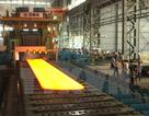 Tập đoàn Hoa Sen tiếp tục nghiên cứu dự án thép Cà Ná
