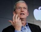 Apple đang trở nên nhàm chán bởi tính cách hiền lành của CEO Tim Cook?