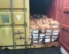 Phát hiện 1 container chứa 3,6 tấn lá Khát cực độc nhập trái phép