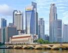 Cho phép cử người sang Pháp, Hàn Quốc, Singapore học kinh nghiệm quản lý
