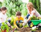 Những lợi ích khi cho con làm bạn với thiên nhiên