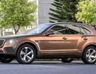 Bentley cân nhắc làm SUV chạy hoàn toàn bằng điện