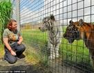 Hổ vồ chết nhân viên sở thú tại Anh