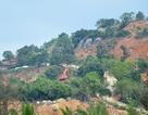 """Một góc bán đảo Sơn Trà bị đào xới, quận """"chưa nắm rõ"""""""