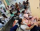 Thủ tướng yêu cầu Chủ tịch tỉnh chịu trách nhiệm về dịch sốt xuất huyết trên địa bàn