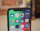 """iPhone X bị """"tố"""" phát ra tiếng tiếng rè từ loa, màn hình xuất hiện sọc xanh"""