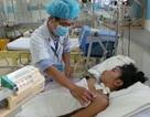 TPHCM: 6 người chết vì sốt xuất huyết