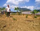 Thanh Hóa: Người dân tái định cư của nhà máy thủy điện bị làm khó