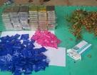 Ngụy trang 59 bánh heroin và 36.000 viên ma túy tổng hợp trong thùng nhãn