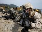 """""""Hàng chục nghìn người Mỹ có thể thiệt mạng nếu xảy ra xung đột trên bán đảo Triều Tiên"""""""