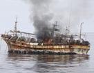 """""""Tàu ma"""" Triều Tiên dạt vào bờ biển Nhật Bản"""