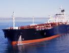 30 tàu biển Việt Nam đang bị lưu giữ ở nước ngoài
