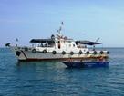 Lực lượng kiểm ngư và những gian nan khi truy quét tàu dã cào