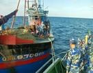 Chủ tàu giã cào cắt dây bỏ trốn khi bị biên phòng bắt giữ