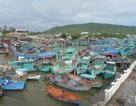 Phú Quốc cấm tàu thuyền ra khơi và cho 20.000 học sinh nghỉ học