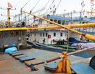 Thủ tướng giao Bộ Công an điều tra nghi án gian lận tàu vỏ thép